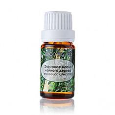 Чайного дерева 100 % натуральное эфирное масло, 10 мл (Аромашка)