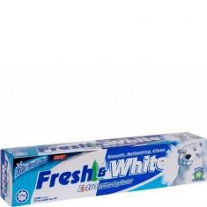 Зубная паста CJ LION